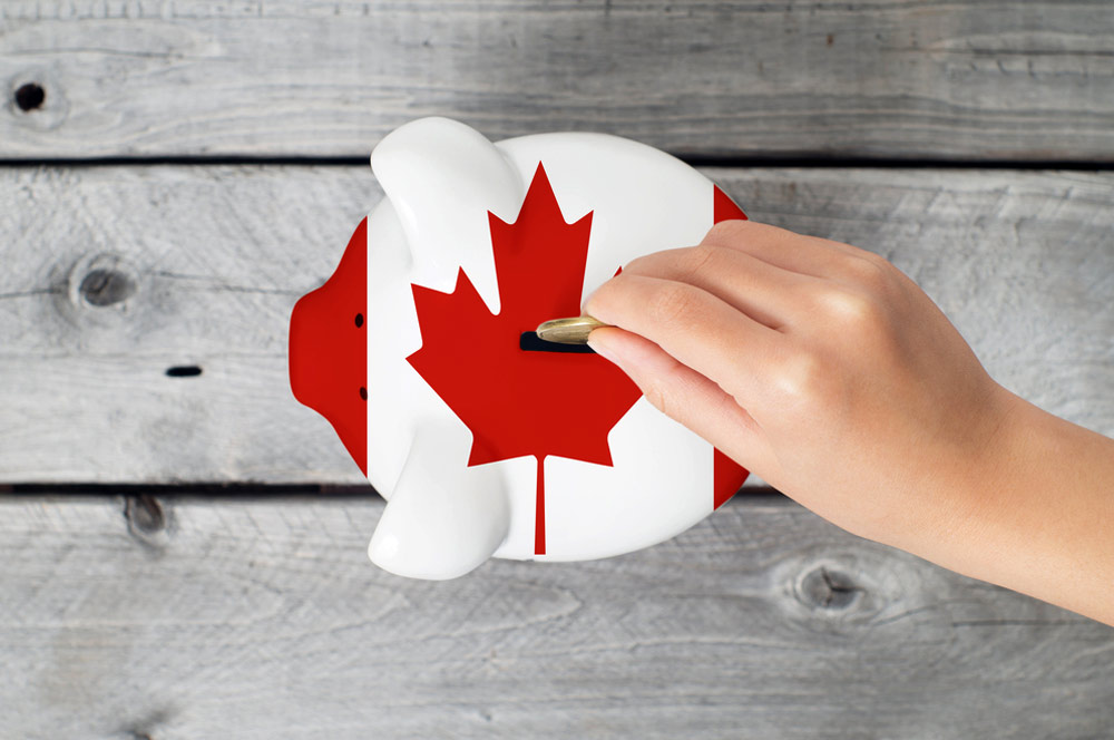 Giving Your Rep Access to Your CRA Account